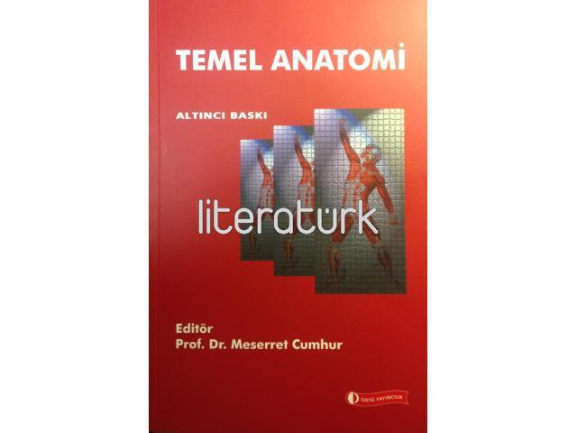 TEMEL ANATOMİ